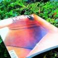 Die Presse-Kolumne:Winterzeit ist Lesezeit. Wir testen, was man so lesen kann: die Guten, die Schlechten & die Abseitigen.